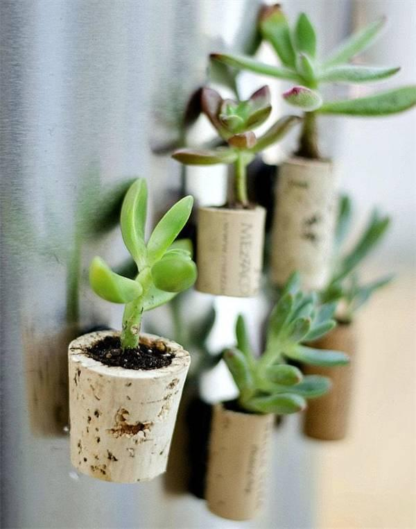 Don't buy a pot again. Teach you not to spend a penny to make potted plants.