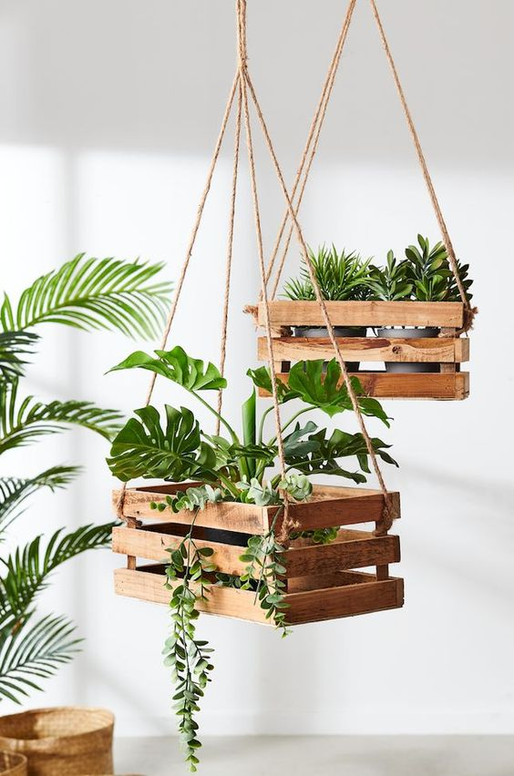 40 Beautiful Hanging Plants Ideas For Home Decor Page 30 Of 42